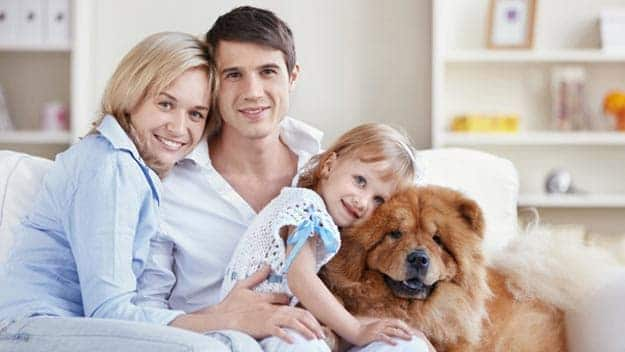 Wills & Trusts dog-young-family Direct Wills West Hampstead